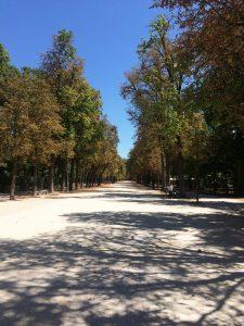 cosa fare a parma: parco ducale