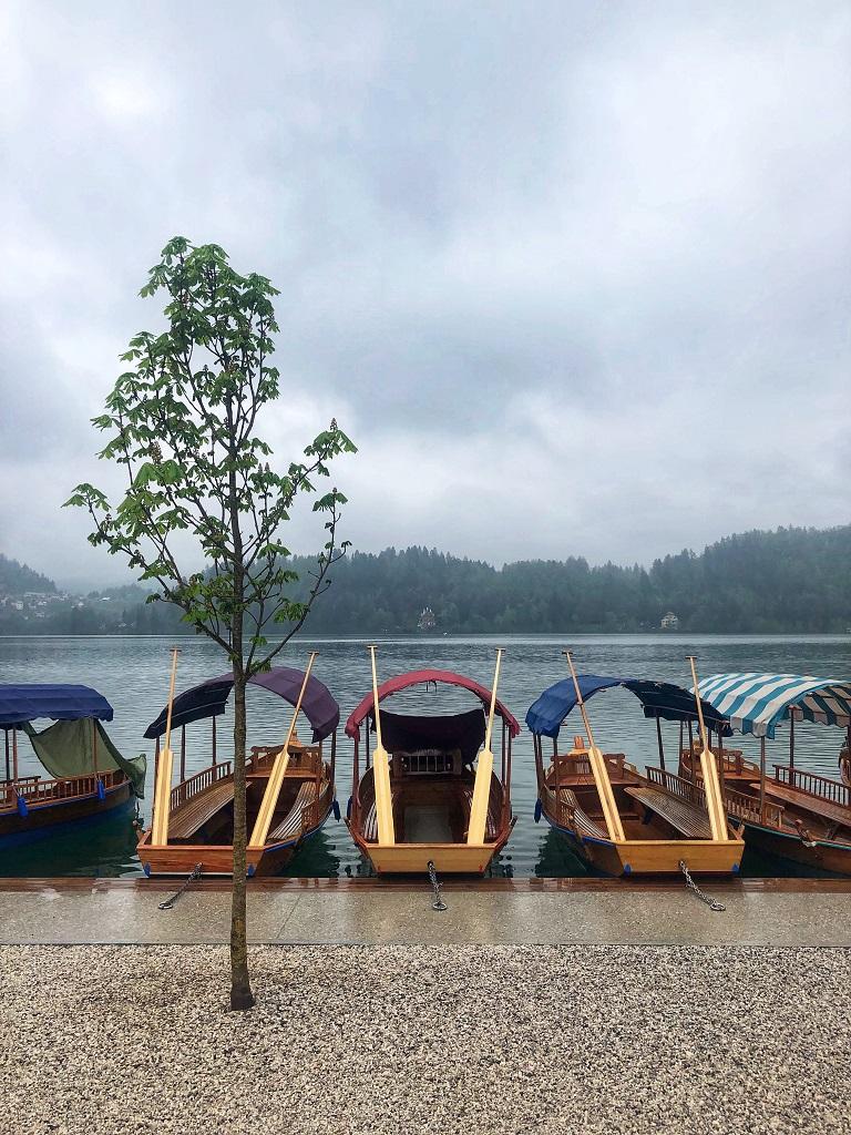 Cosa vedere in Slovenia: Pletna sul Lago di Bled