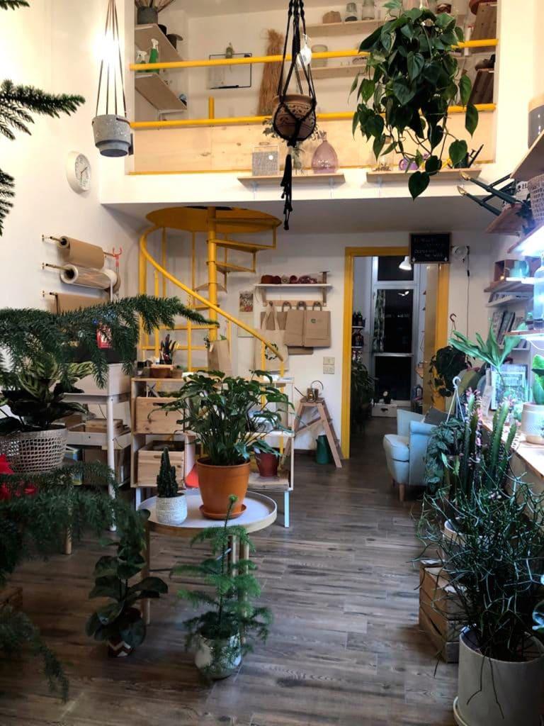 Wild, negozio di piante
