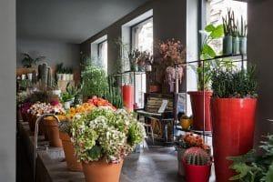 Fioristi a Milano: Fiori di Rosalba Piccinni