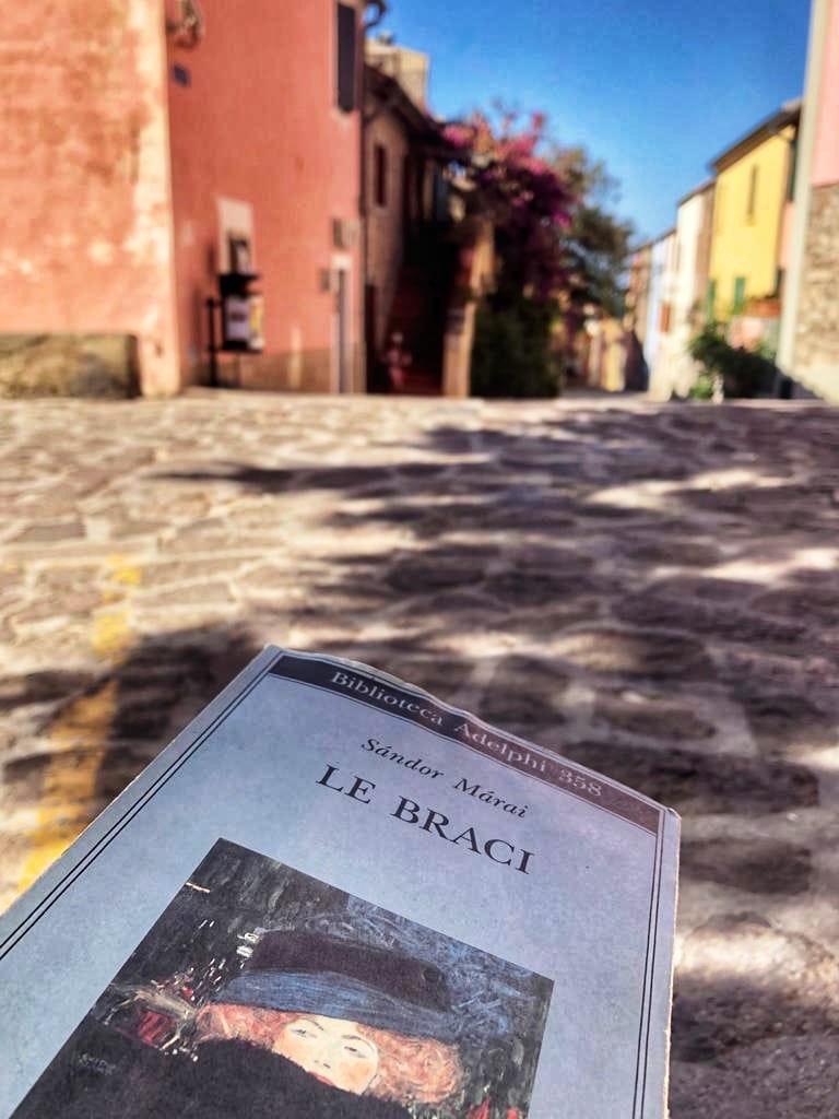 """5 libri da leggere a Maggio: """"Le braci"""""""
