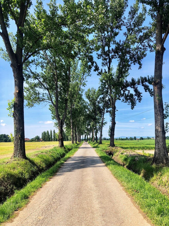 Passeggiate in Lombardia nella natura: Cascina Guzzafame
