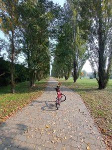 Milano in bici: Certosa di Pavia