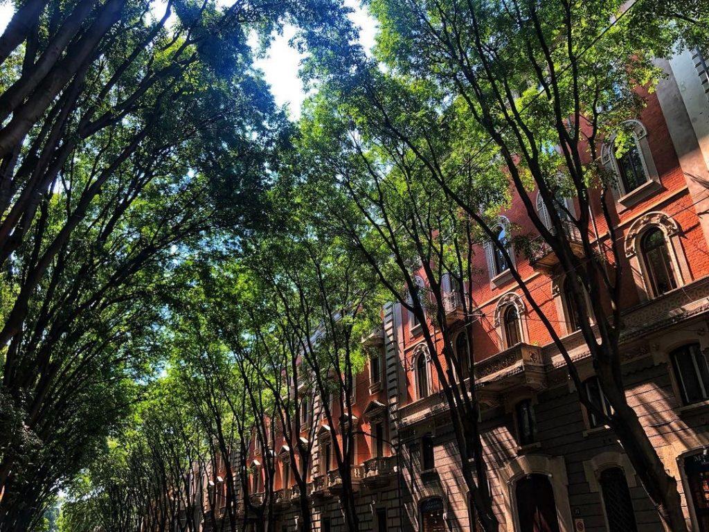 Cercare casa a Milano: via Vincenzo Monti