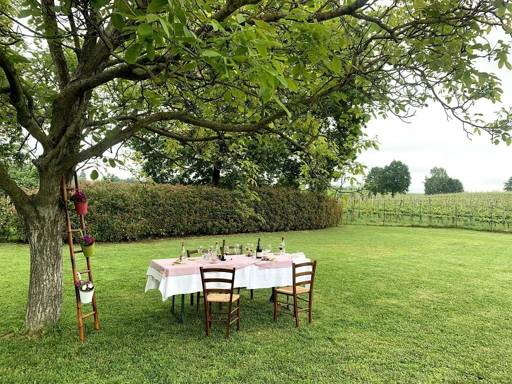 Cantine vicino a Milano: Azienda vitivinicola Picchi