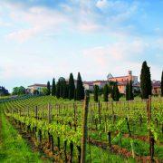 Fiere del Vino: Franciacorta Festival